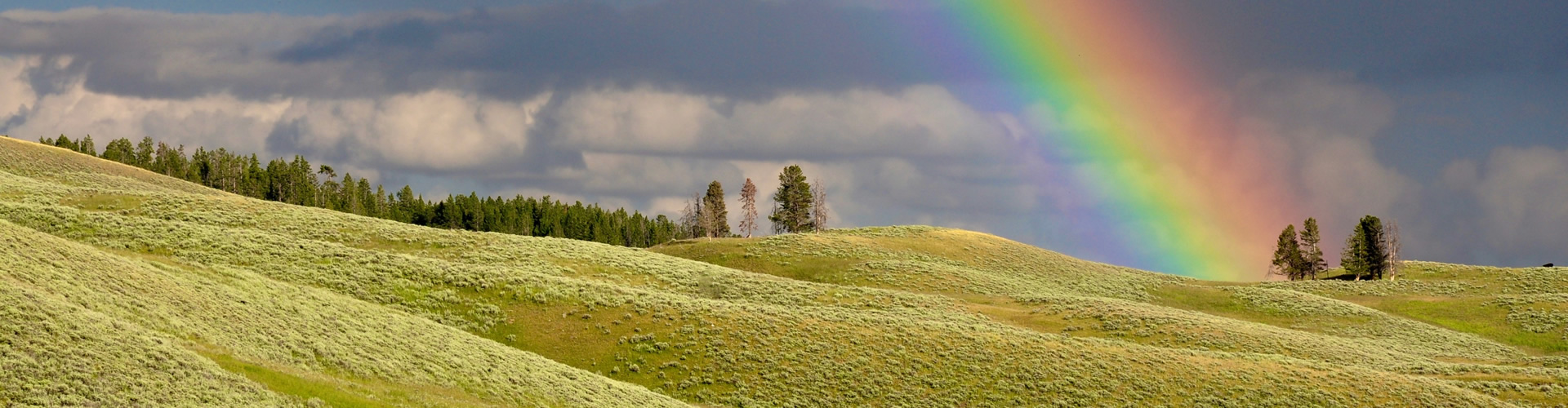 plans-rainbow